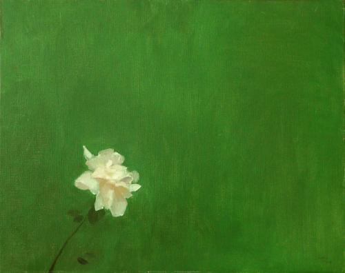 1974 - Grande rosa bianca