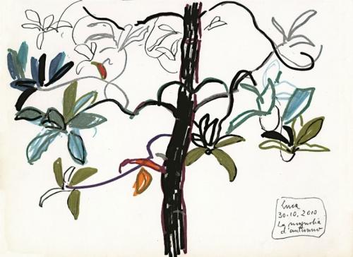 2010 - La magnolia d'autunno